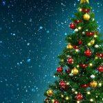 Kellemes Karácsonyi Ünnepeket!🎄